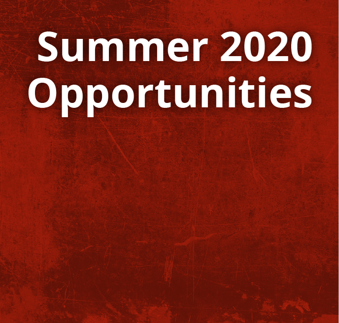 Summer 2020 Opportunities